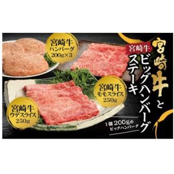 宮崎牛づくし☆宮崎牛と宮崎牛ハンバーグステーキ(合計1.1kg)
