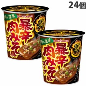 ポッカサッポロ  辛王 暴辛肉みそ風スープカップ 18.5g×24個