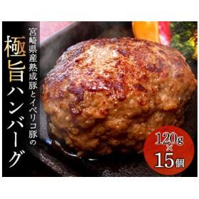 宮崎県産熟成豚とイベリコ豚のハンバーグ120g×15個