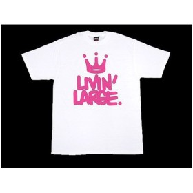 STUSSY(ステューシー)×Haze Livin Large S/S Tee Haze Tシャツ ティーシャツ 半袖