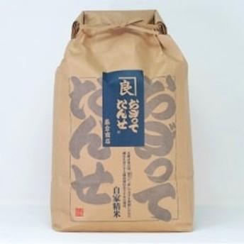 五ツ星お米マイスター厳選・横手産特別栽培米「あきたこまち」5kg×1袋