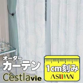 【生地のみの購入! ※1m以上10cm単位で購入可能】<br />カーテン プレーンシェード アスワン セラヴィ C'estlavie High Spec Lace E7243