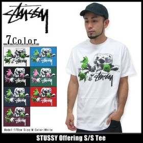 ステューシー STUSSY Offering Tシャツ 半袖(stussy tee ティーシャツ T-SHIRTS トップス メンズ・男性用 1903368)