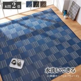 ラグ 洗える PPカーペット 『ウィード』 ネイビー 本間2畳(約191×191cm) 2121512 イケヒコ