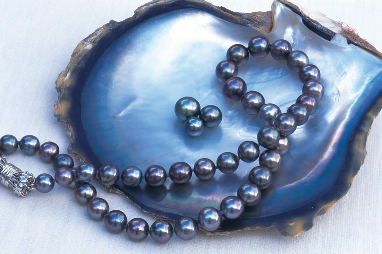 虹色に輝く黒い真珠