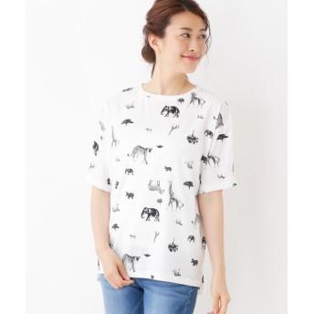 Tシャツ - SHOO・LA・RUE リゾートサファリTシャツ