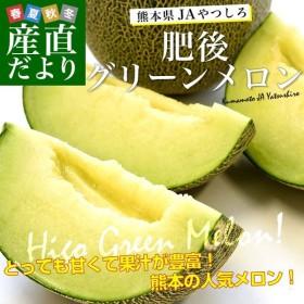 送料無料 熊本県産 JAやつしろ 肥後グリーンメロン 優品以上 超盛り 8キロ(約2キロ×4玉) めろん 市場スポット