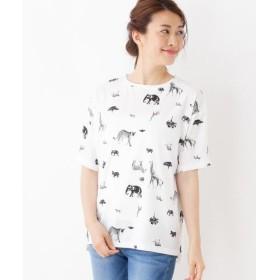 SHOO・LA・RUE / シューラルー リゾートサファリTシャツ