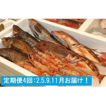 【2.5.9.11月】日本海の鮮魚定期便(年4回発送)下処理済み