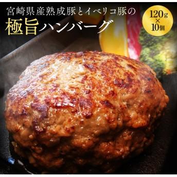 宮崎県産熟成豚とイベリコ豚のハンバーグ120g×10個