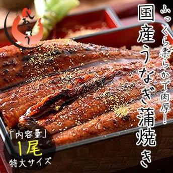 お中元 ギフト うなぎ 蒲焼き 国産 特大サイズ 200g×1尾 ウナギ 鰻