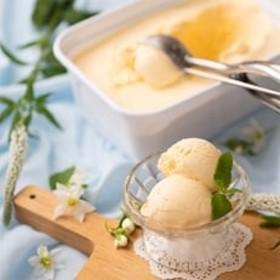 フルーツソムリエが作った濃厚ジェラート『濃厚まろやかバニラ』アイス