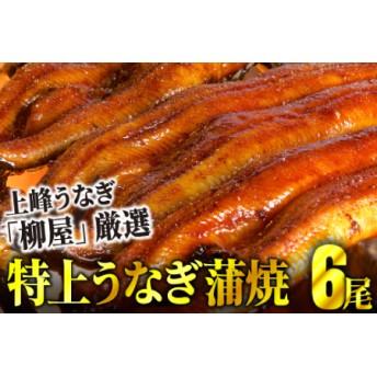 上峰鰻 鰻蒲焼 6尾