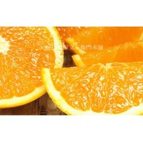 清見オレンジ[約4.5kg]湯浅町田村産春みかん(清見オレンジ 湯浅町田村産春みかん春柑橘 (果実サイズおまかせ))