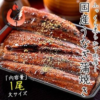 お中元 ギフト うなぎ 蒲焼き 国産 大サイズ 170g×1尾 ウナギ 鰻