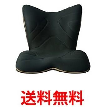 MTG 骨盤サポートチェア Style PREMIUM(スタイルプレミアム) ブラック 送料無料