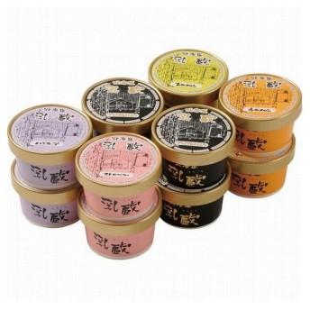 乳蔵 北海道アイスクリーム プレミアムバニラ入り 12個