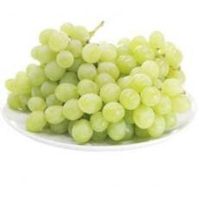 【美しく透き通るマスカット系葡萄】ロザリオ・ビアンコ 4kg