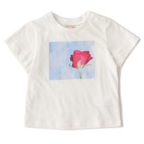 プティマイン(petit main)/バラフォトプリントTシャツ