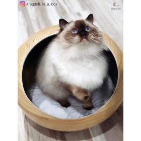 値下げ スタイリッシュな竹製ベッド ねこベッド ハンドメイド キャットハウス(スレート)