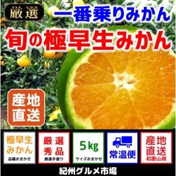 【極早生みかん】 旬の極早生 5Kg(2S~L)【紀州グルメ市場】◆◆