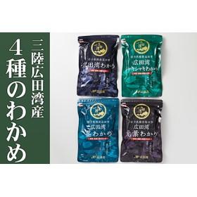 広田湾漁協からお届け!わかめセット【期日指定不可】