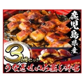 うなぎせいろ蒸し弁当(冷凍)3個 南竹鰻加工