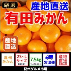 【産地直送】有田みかん 約7kg(2S~Lサイズ)【紀州グルメ市場】◆◆