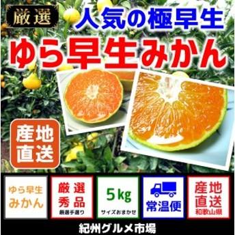 【極早生みかん】 ゆら早生 4Kg(2S~L) 【紀州グルメ市場】◆◆