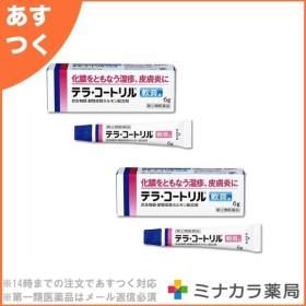 テラ・コートリル軟膏a 6g ×2個セット 医療用と同成分配合 (指定第2類医薬品) ※1個から購入可