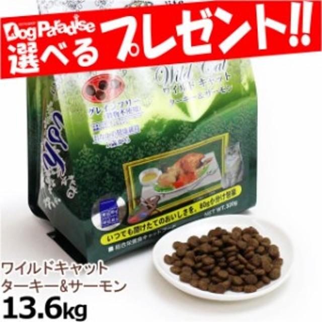 Wish ワイルドキャット ターキー&サーモン 13.6kg(お取り寄せ商品)