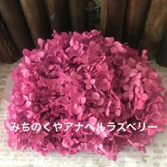 みちのくやアナベルあじさい小分け ️ラズベリー ️レジンアクセサリー花材プリザーブドフラワー