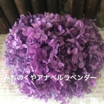 みちのくやアナベルあじさいラベンダー小分け ️レジンアクセサリー花材プリザーブドフラワー