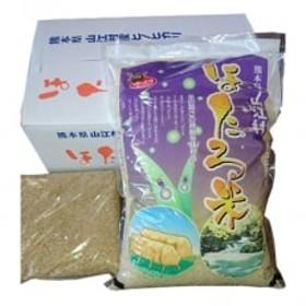 【先行受付 令和元年産米】天日掛け干しほたる米5kg・玄米1kgセット