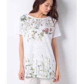 (SISLEY/シスレー)デボレナチュラルプリント半袖Tシャツ・カットソー/レディース ホワイト系その他
