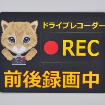犬、猫イラスト ドライブレコーダー ミニ UV加工 ステッカー 9cm×6.5cm