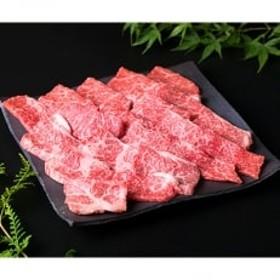 (まるごと糸島)A4ランク糸島黒毛和牛モモ肉赤身焼肉用500g入り