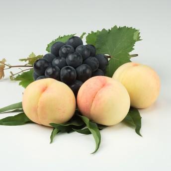 【お中元】晴富 岡山の桃と種なしピオーネ
