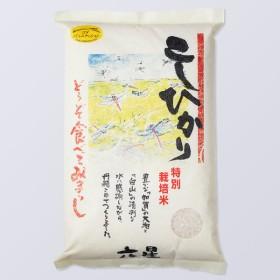 六星特別栽培米こしひかり【出産内祝いに】