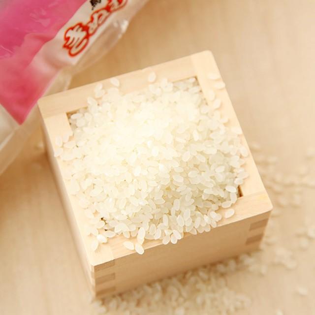 鳥取県産米「きぬむすめ」5kg【出産内祝いに】