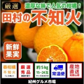 田村の不知火 約5kg(15~24玉)【紀州グルメ市場】◆◆