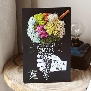【日比谷花壇】URBAN GREEN MAKERS グリーンアートキット「アイスクリーム」