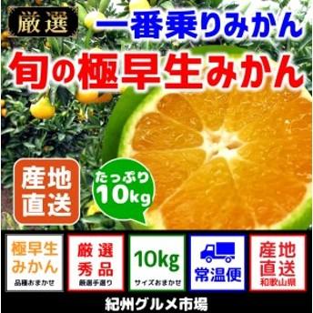 【極早生みかん】 旬の極早生 10Kg(2S~L)【紀州グルメ市場】◆◆