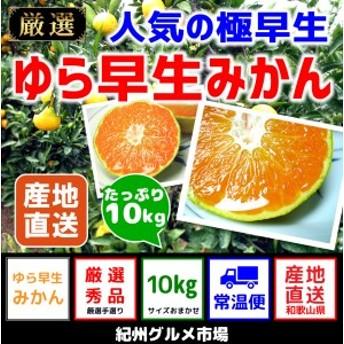 【極早生みかん】 ゆら早生 10Kg(2S~L)【紀州グルメ市場】◆◆