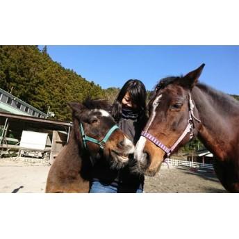 馬とふれあい&乗馬体験チケット