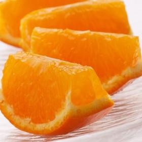 <4月発送>セミノールオレンジ3kg(セミノールオレンジ)