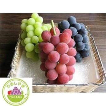 【先行受付】高級ぶどう種なし品種5房詰め合わせ【S662】