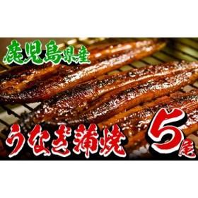 厳選!鹿児島県産うなぎ蒲焼 大5尾(約800g)