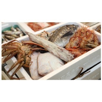 日本海の獲れたて鮮魚詰合せ(小)下処理済み(セット)