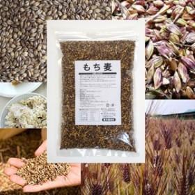 紫もち麦 1kg×5袋【2019年6月収穫 5kg 紫もち麦ごはん 国産 高栄養 ダイシモチ ダイエット食品 食物繊維 5キロ 業務用 送料無料】